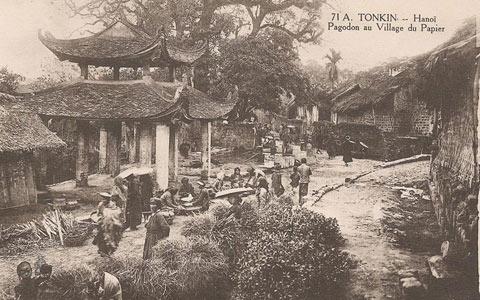 Cảnh quan trong làng nơi tập trung cây dó