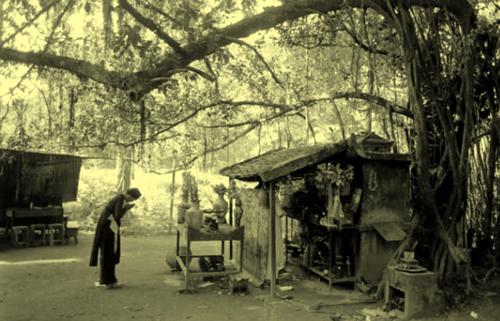 http://phienbancu.tuoitre.vn/tianyon/ImageView.aspx?ThumbnailID=453173